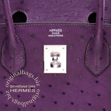Hermes Birkin 30 Violine
